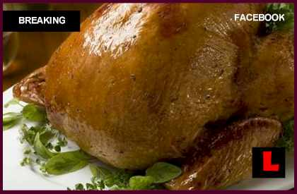 How long to cook a turkey per pound butterball reveals for How long to cook 11 lb turkey