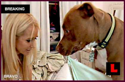 Kim Richards Dog Kingsley Attacks Kyle Richards Daughter & More? EXCLUSIVE