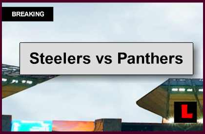 Steelers vs Panthers 2014 Score: Ben Roethlisberger Battles Cam Newtown