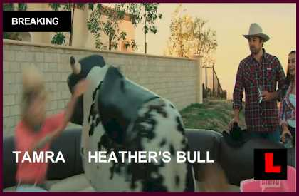 RHOC: Did Tamra Barney Break Her Arm on Heather Dubrow's Mechanical Bull?